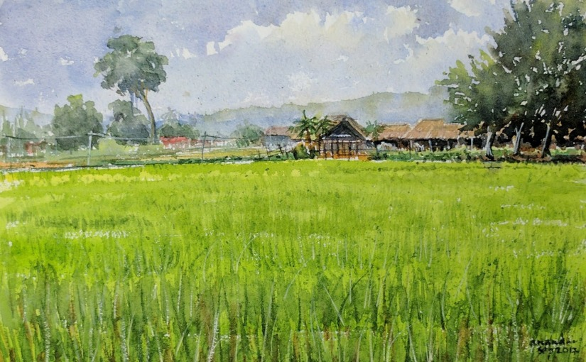 The Withering of a PaddyField